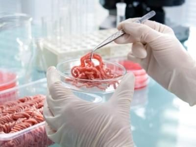 """Предложение за създаване на нов технически комитет в областта """"Микробиология на хранителната верига"""""""